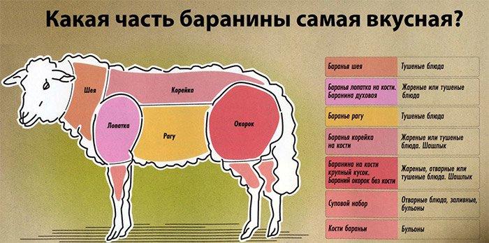 Как выбрать баранину