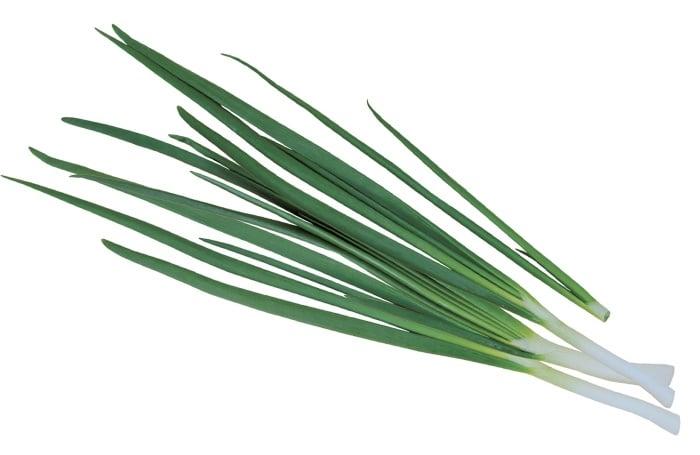 зеленый лук для кормящей мамы