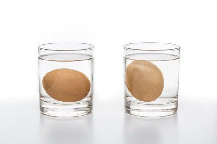 проверка свежести яиц