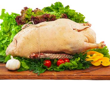 мясо гуся при грудном вскармливании