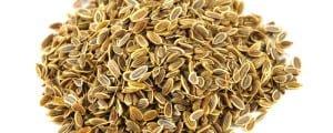 семена укропа для приготовления укропной водички