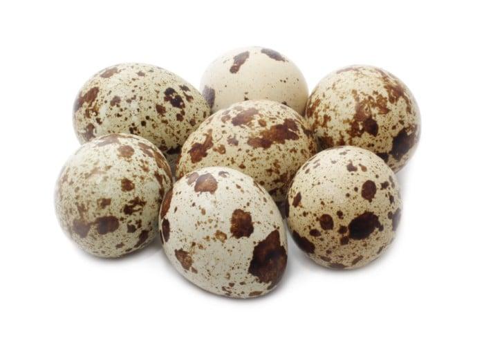 перепелиные яйца в рационе грудничка