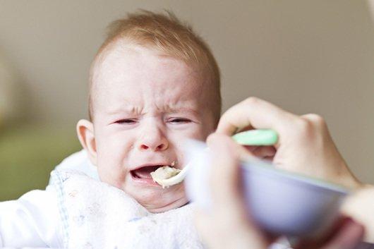 ребенок не хочет есть прикорм