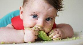 авокадо в прикорм грудничку