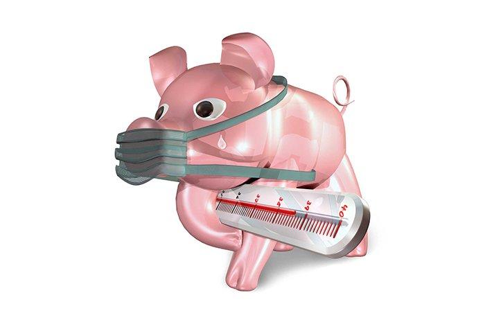 инфекция свиной грипп