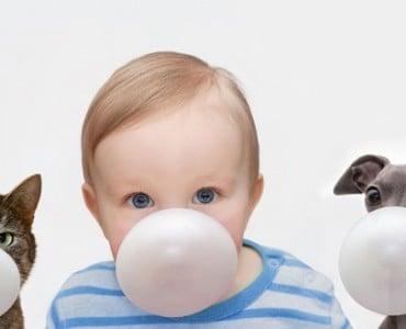 Можно ли детям жвачку