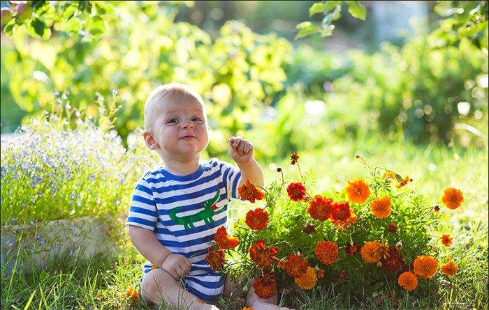 Аллергия на пыльцу профилактика и лечение