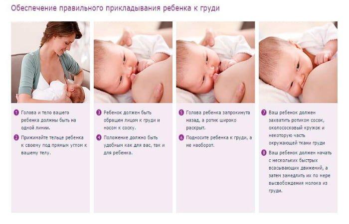 техника прикладывания к груди