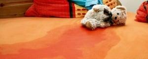 описанная кровать