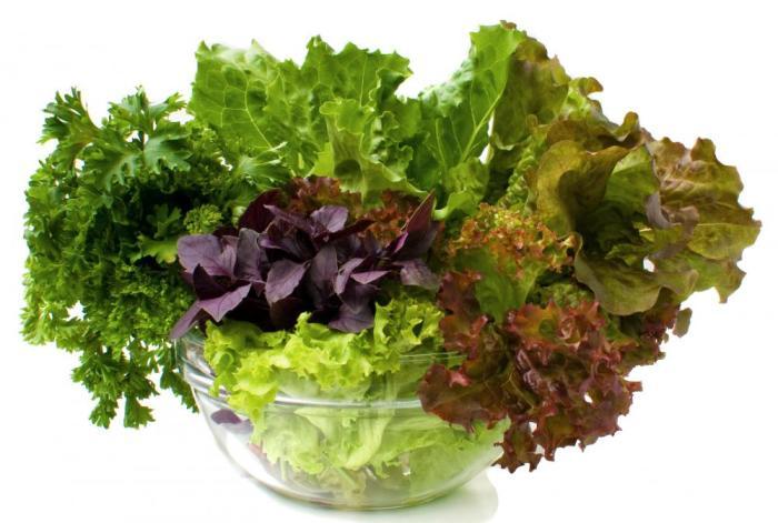 Можно ли кормящей маме салат листовой