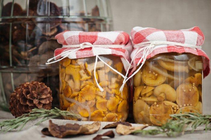консервированные грибы при грудном вскармливании