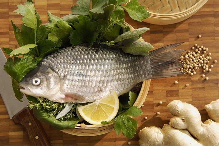 рыба в прикорм грудничка