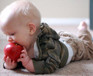 яблоко для грудничка