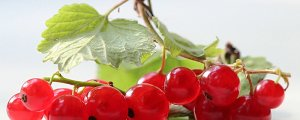 ягоды для кормящей мамы