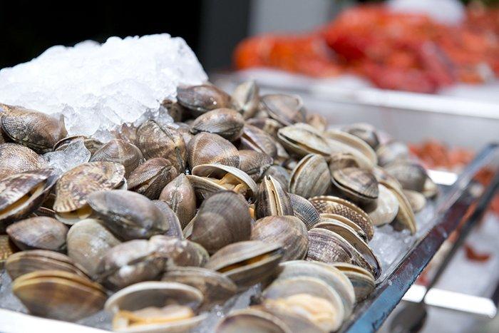 моллюски для кормящей мамы