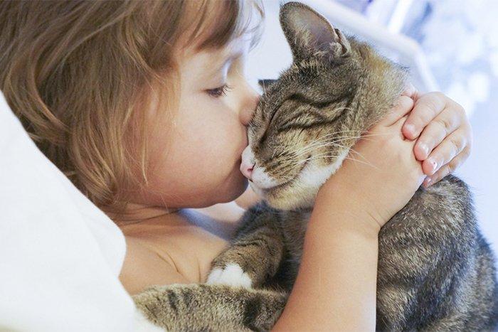 воспитание у детей доброжелательного отношения к животным