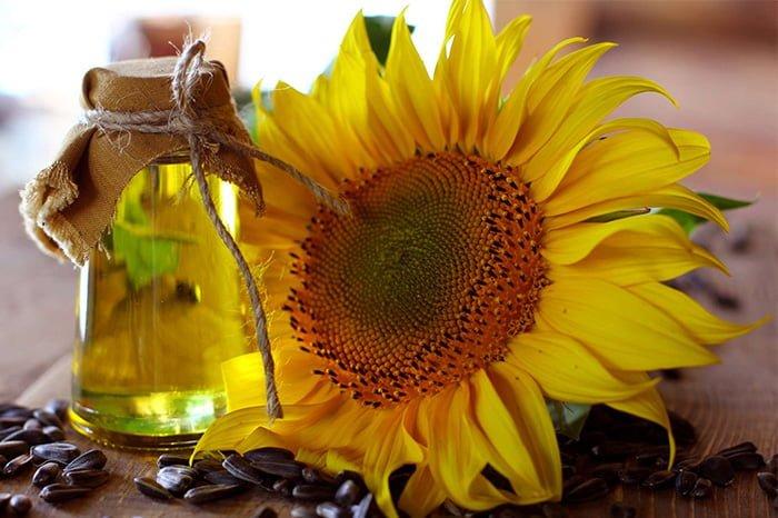 масло из подсолнуха в домашних условиях