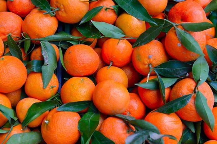 мандарины из марокко