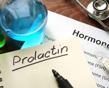 пролактин во время лактации