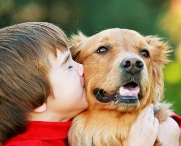 Ребенок хочет собаку