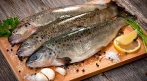 Форель рыба