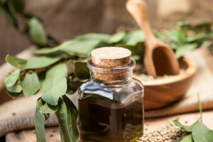 Лавровый лист и масло