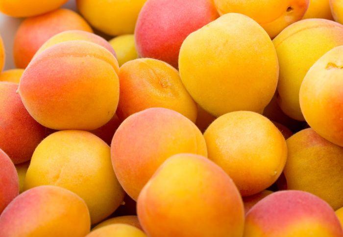 Как выбрать и хранить абрикосы